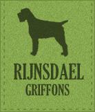 Griffon-Korthalskennel van 't Rijnsdael